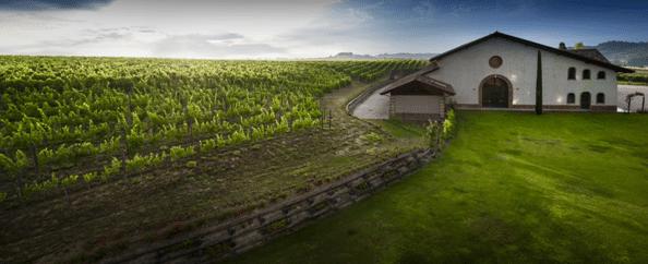 Timorasso Winery